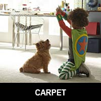 Floors 55 Carpet Distributor in Portland OR